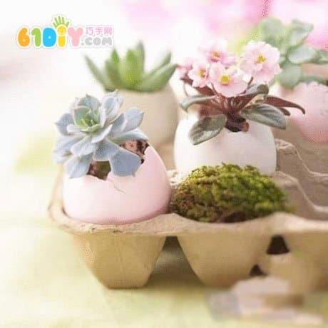 Handmade egg shell potted