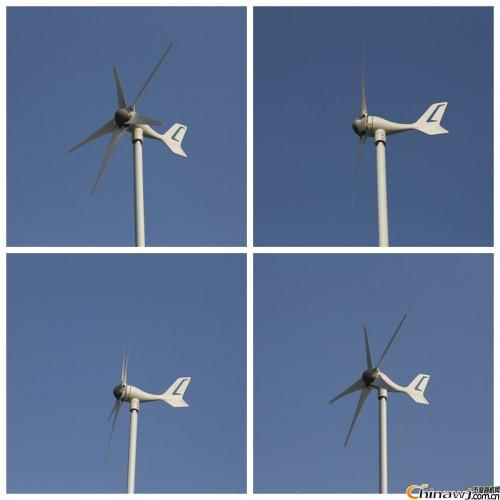 A Survey of the Distribution of Wind Energy Resources in China