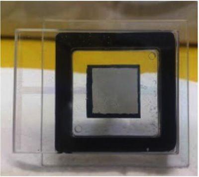 Carbon nanotube field emission array