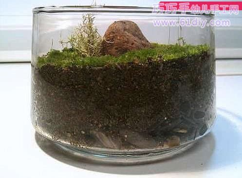 Beautiful bonsai production