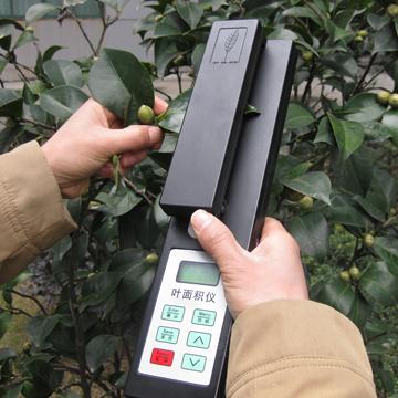 Laser leaf area meter