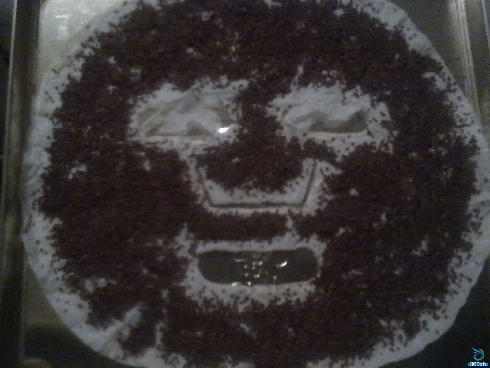 Seaweed mask