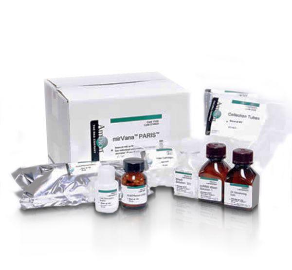 经典收藏 猪ELISA试剂盒实验的六大阶段