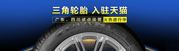 Innovation and Change Triangle Tire Counterattack Market