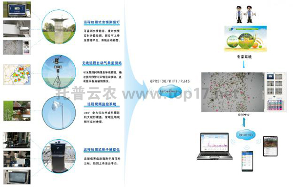 Plant Protection Information System