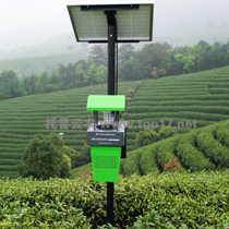 Tea plant insecticidal lamp