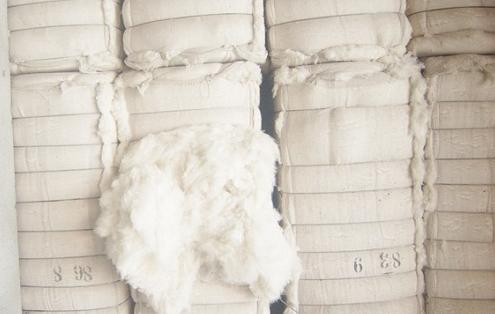 India's cotton production is expected to reach 6 million tons in 2012/2013