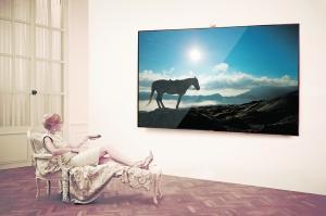 Samsung's largest size TV luxury ES9000