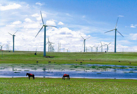 Temporary Act on Acceptance Management of Wind Farm Projects