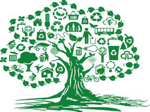Ecological Civilization International Forum focuses on green traffic