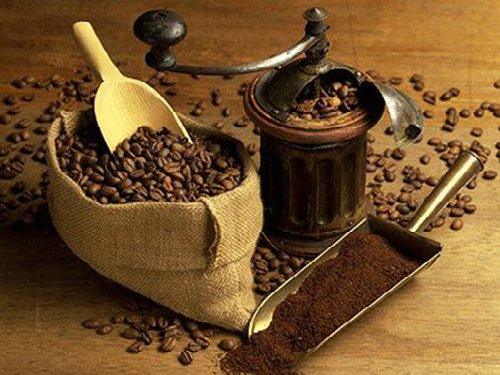 Yunnan coffee processing capacity exceeds 20,000 tons