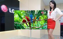 OLED becomes the new theme of global color TV