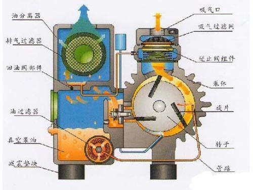 Oil Seal Vacuum Pump Working Principle