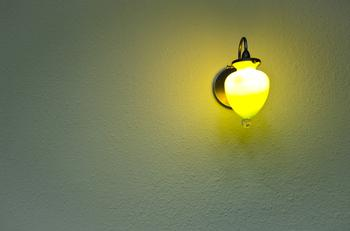 LED agricultural lighting prospects are optimistic