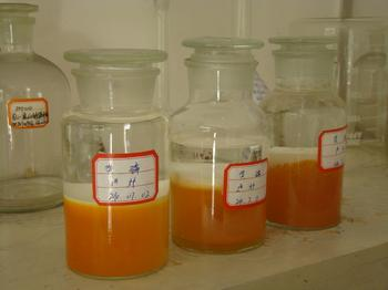 August 13 domestic yellow phosphorus prices into the mainstream