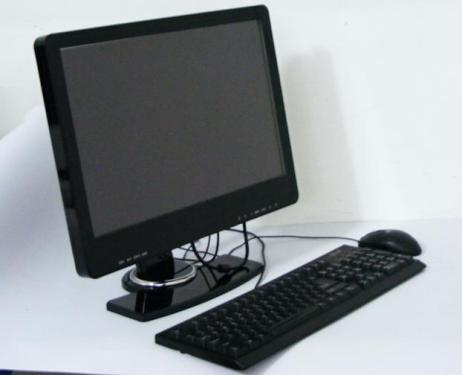 Few domestic computer companies meet new European standards
