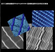 Image observed by atomic force microscope