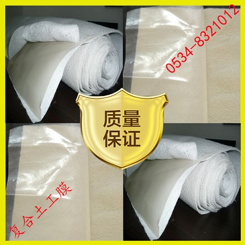 Agricultural reservoir irrigation channel and geotextile