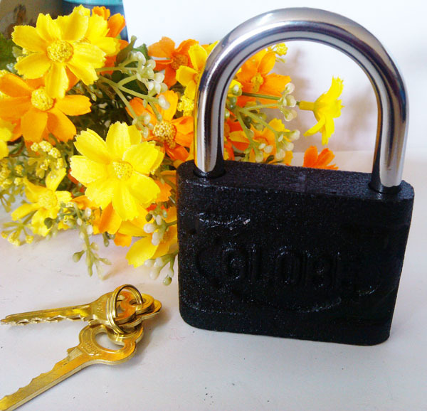 Pujiang County Zhongyu Xiang Xinrui Lock Factory provides high quality padlocks