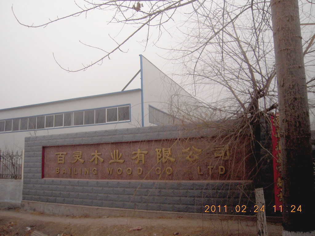 Shouguang Bailing Wood Industry Co., LTD.