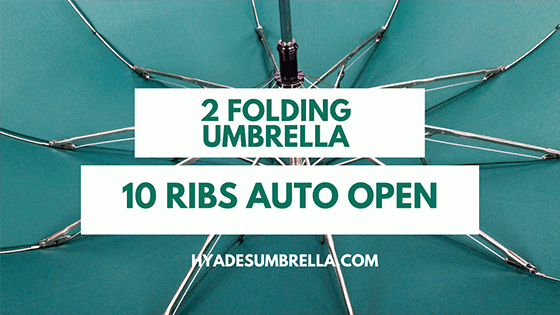10 Ribs Auto Open 2 Folding Umbrella