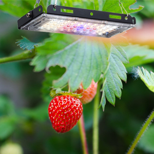Aogled Plant Grow Lights for Indoor Plants Full Spectrum Panel Growing Lamp for Seedling Veg Flower