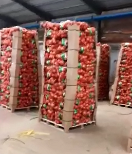 FRESH ONIONS JINING FUYUAN FRUITS AND VEGETABLES CO ,LTD