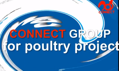 CONNECT full automatic poultry processing line