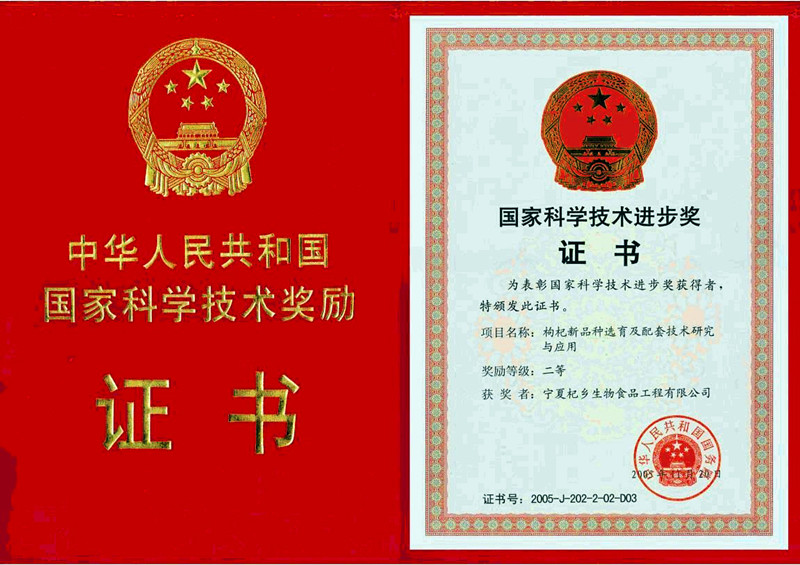 The Second Prize of National Scientific and Technological Progress Award