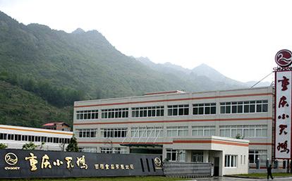 ChongQing Baifu Foods Co., Ltd.