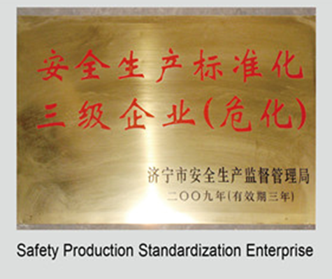 Safety production standard  company