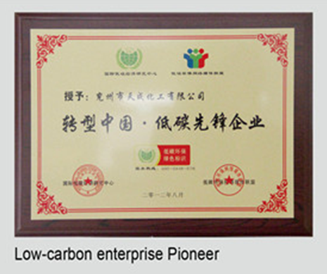 Low carbon pioneer enterprise