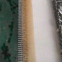 3.5 M Polyester Filter Mesh Belt Manufacturer