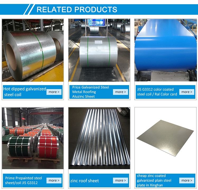 Prepainted Color Painted Galvanized Steel Coil PPGL