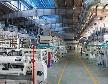 Daoming Optics & Chemical Co., Ltd