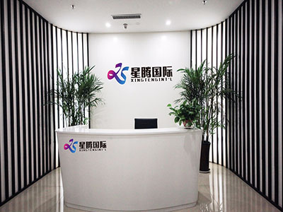 SHANDONG XINGTENG INTERNATIONAL TRADE CO., LTD.