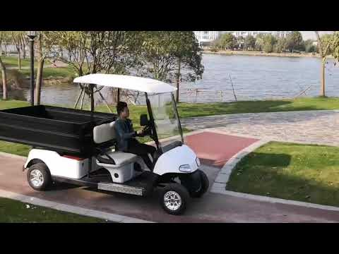 Beautiful battery powered golf cart with cargo use hotel.