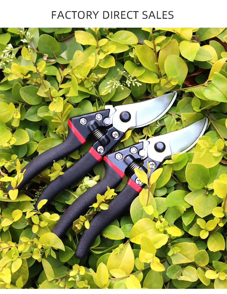 Herramientas de jardín profesionales SK5 hoja mango negro tijeras de podar tijeras de podar tijeras de podar tijeras de podar