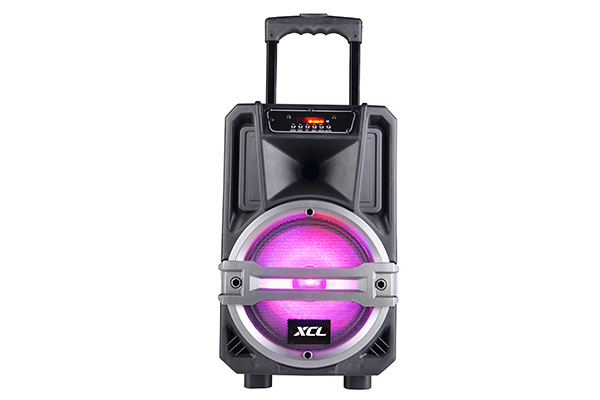 Portable party speaker with tripod stand and microphone includes a built-in Bluetooth receiver.