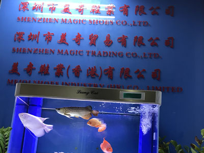 Shenzhen Magic Shoes Co.,Ltd