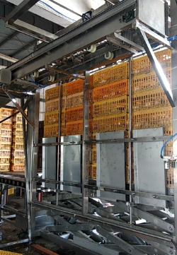 Live chicken crates destack machine of poultry processing line