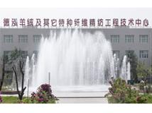 Dehong International Cashmere CO., LTD.