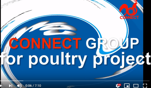 CONNECT poultry processing line