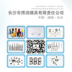 Professional mold parts manufacturer-Borun