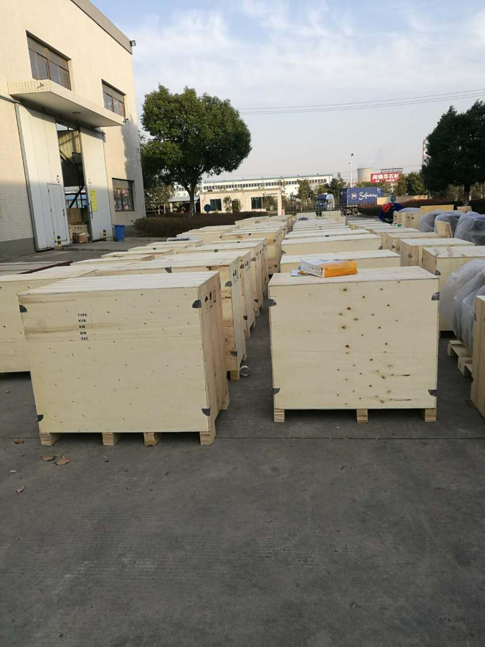 Industrial Generator Packed With Plywod Case