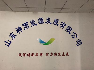 Shenyu Energy (Shandong) Development Co. Ltd