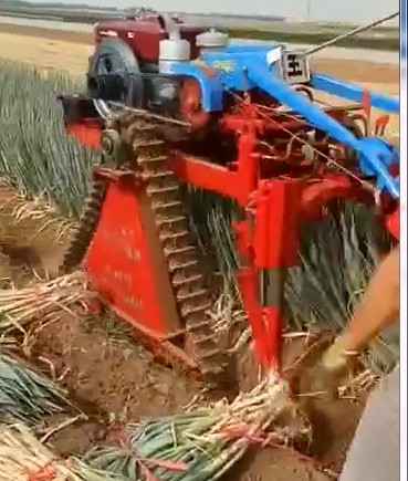 Green onion Harvester