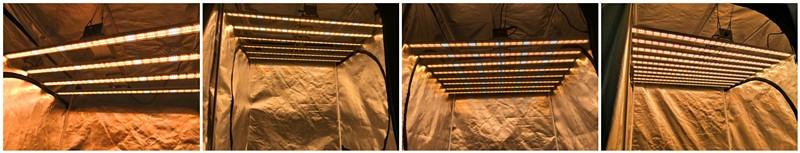 Hot Products IP65 LED Aquarium Light 800w 1000w with MeanWell LED Driver 347V 110V 220V