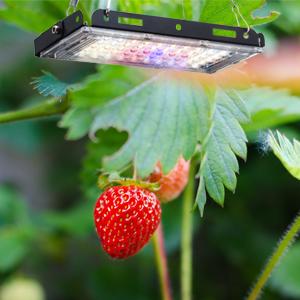 Aogled Plant Grow Lights for Indoor Plants Full Spectrum Panel Growing Lamp for Seedling Veg Flower