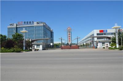 Shandong Qingneng Power Co., Ltd.